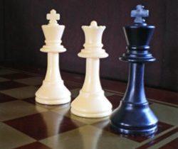 Dana blogs chess